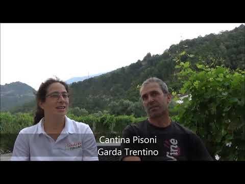 Cantina Pisoni: Azienda agricola - Trentino-Alto Adige