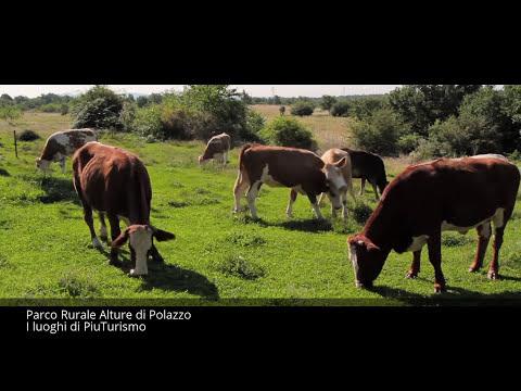 Parco Rurale Alture di Polazzo - I luoghi di PiuTurismo