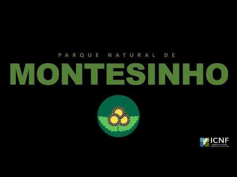 41º aniversário do Parque Natural de Montesinho
