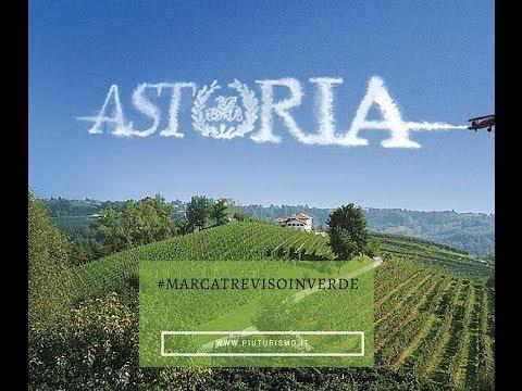 Alla scoperte dell'eccellenza di Astoria Vini con un'autista eccezionale!