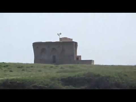 Torre Guaceto - Oasi WWF