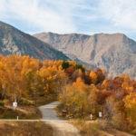 Parco naturale Col del Lys