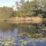 Parco naturale Lagoni di Mercurago