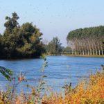 Parco regionale Oglio Sud