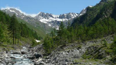 Parco Naturale dalla Val Troncea