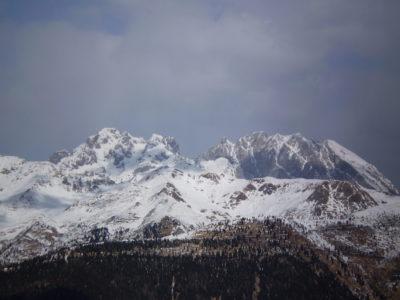 Vetta Monte Coglians