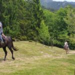 Alla ricerca degli Indiani e sulle tracce della peste: scopri il Lago di Garda a cavallo