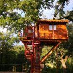 Casa sull'albero Tenuta Bocchineri