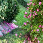 Bed and breakfast Cascina Belsito