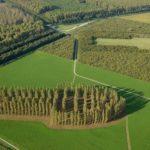 Land Art: itinerari per scoprire le 7 opere d'arte