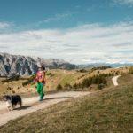 """Movimënt, un'estate """"da cani"""": il parco è sempre più accogliente e dog friendly"""