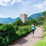 Muoviti a Merano: Early Bird, vale la pena alzarsi presto