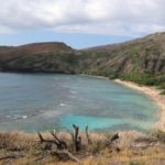 Nuotare con le tartarughe, la baia di Hanauma alle Hawaii