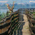 Oasi Naturalistica La Valle