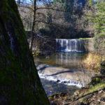 Parco del Canto alla Rana a Stia lungo il fiume Arno