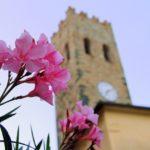 Piccoli ed insoliti musei in Liguria