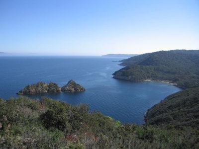 Parco Nazionale Port Cros: il primo parco marino in Europa