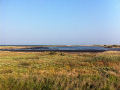 Parco naturale regionale Salina di Punta Contessa