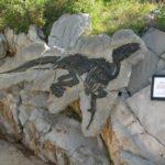Sito paleontologico del dinosauro Italiano, Villaggio del Pescatore, vicino Trieste