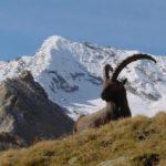Trekking in Val Taleggio