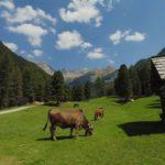 Valle Corsaglia
