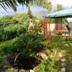 Casa Vacanze Il Delfino