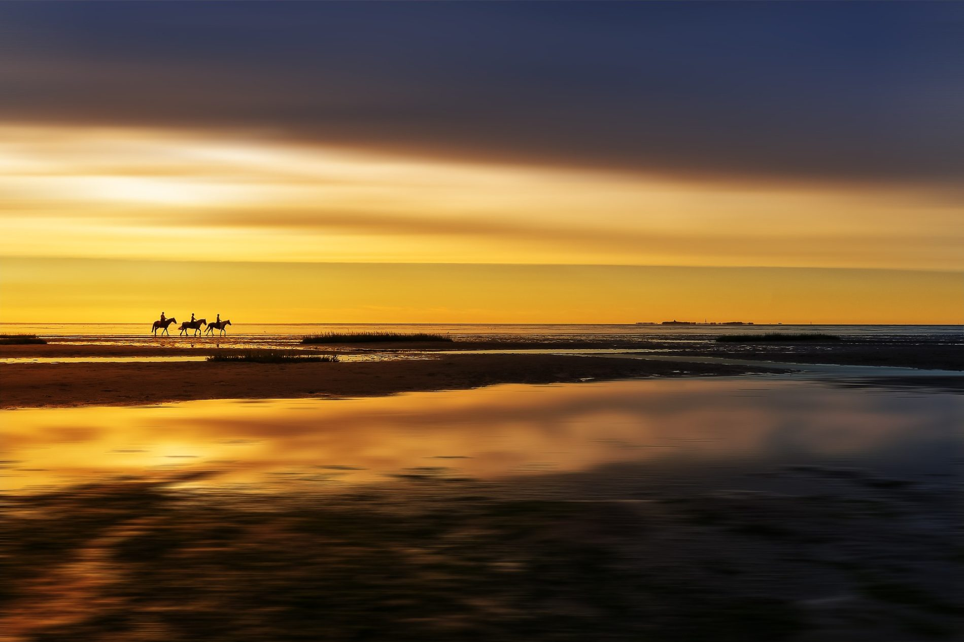 parco-nazionale-Wadden-Sea-cover