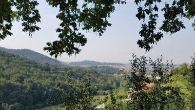 Un viaggio nelle terre del Moscato di Scanzo