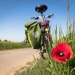 Giornata Mondiale Bicicletta 2021