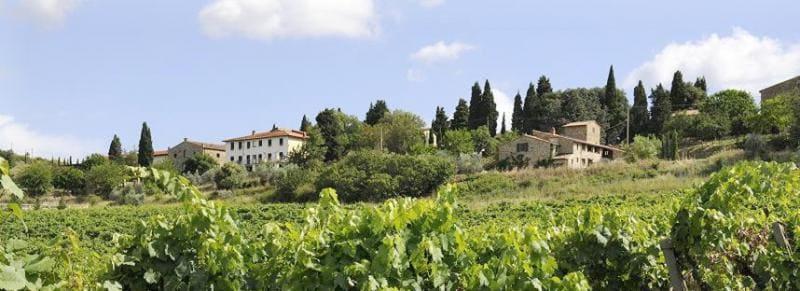 montelucci-country-resort