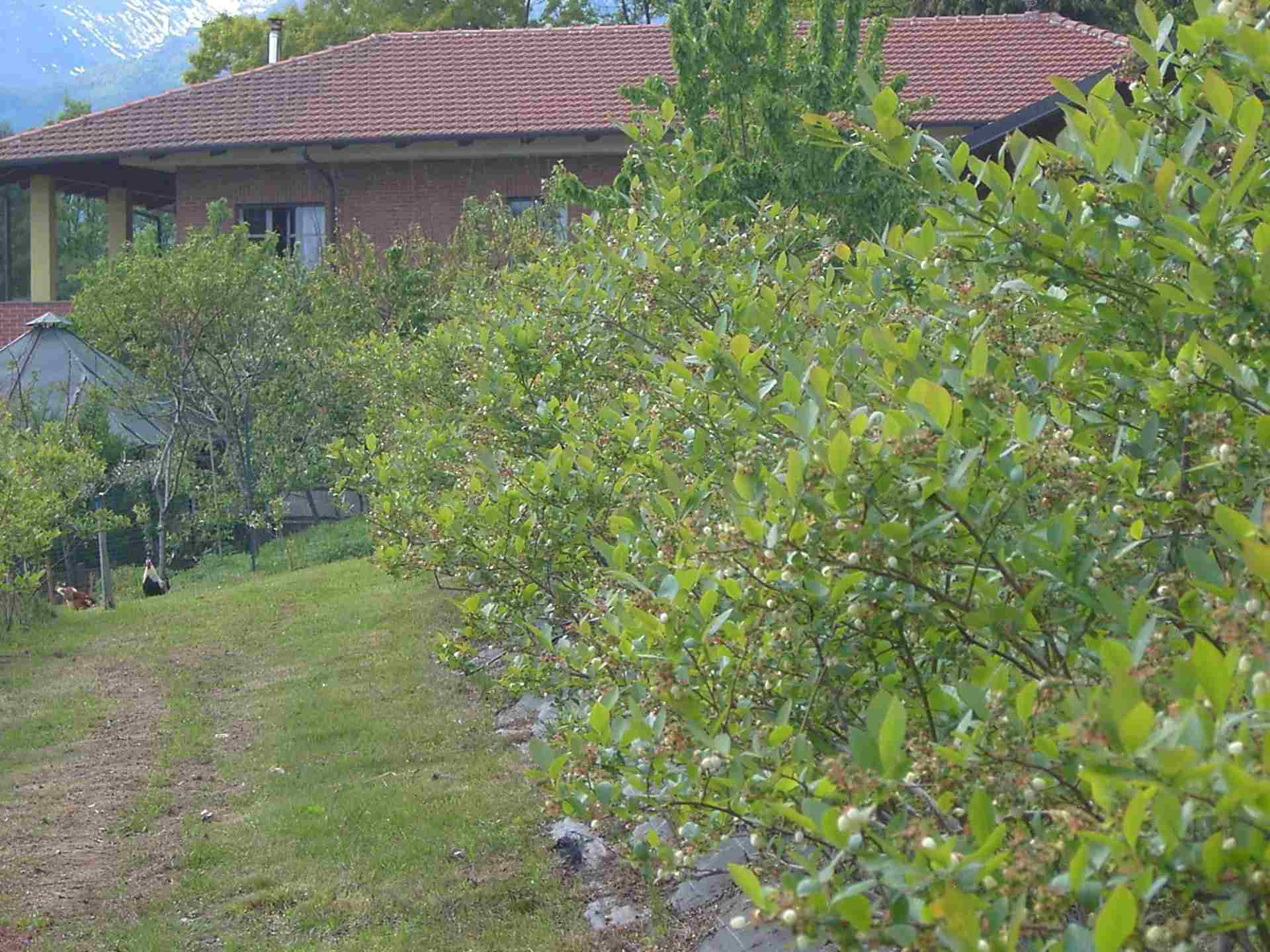 bed-breakfast-il-ginepro
