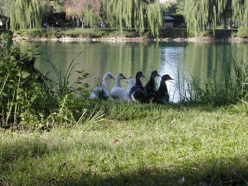 parco-naturale-aquadulsa