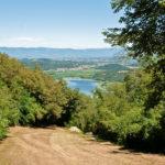 Parco naturale dei Colli Berici