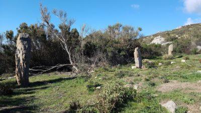 Sassi Ritti, i menhir dell'Isola d'Elba