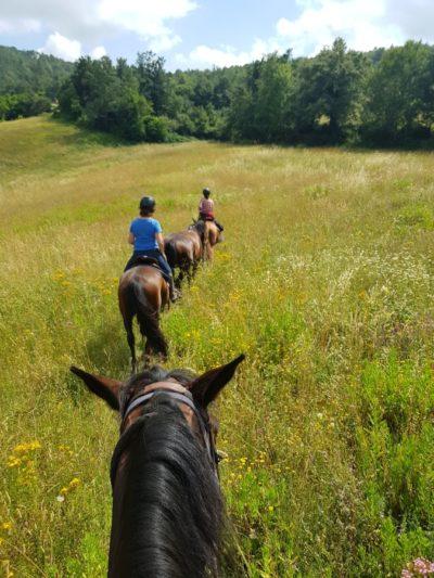 Horseback riding in Alta Maremma