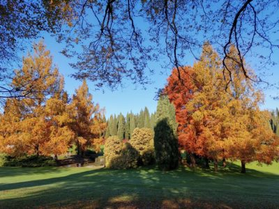 L'autunno al Parco Giardino Sigurtà